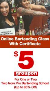 online-bartending-course